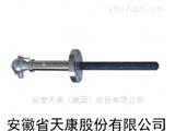 WRN2-630NM 水泥厂专用耐磨热电偶